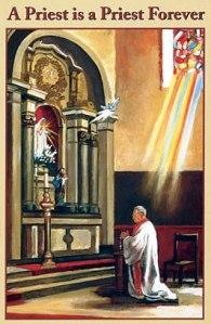 sacerdos 6